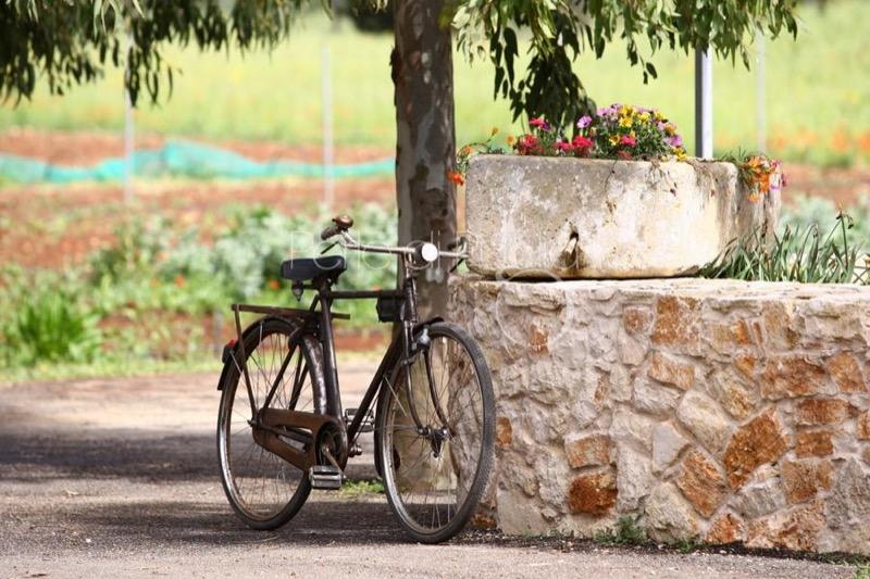 La-Puglia-in-Bici-I-Tours